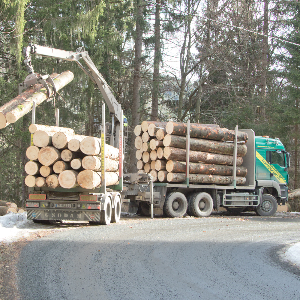 holztransport 3